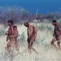 Die San Bushmen - ein Volk der Jäger und Sammler ...