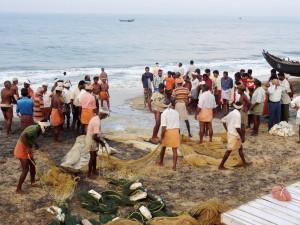 Einholen des frischen Fangs aus dem Meer ist Teamarbeit