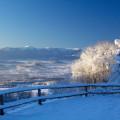 Von der Mufflonhütte kann man die Schneekoppe im Riesengebirge sehen
