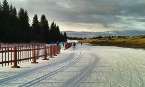 Bestens präparierte Loipen am Lavazèjoch machten unser Skilanglaufcamp zum Erlebnis.