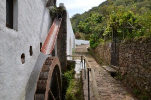 Eine historische Wassermühle - hier erwartet Sie ein traditionelles Abendessen.