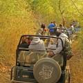 Auf Safari im Ranthambore-Nationalpark