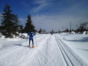 Die Läufe der Lapponia Skiwoche werden vorwiegend in Skatingtechnik durchgeführt, doch auch für den klassischen Stil ist eine Spur präpariert.