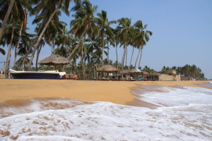 Verdiente Erholung an Sri Lankas Westküste