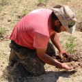 Manolis baut auf seinem Feld fast vergessene Getreide- und Hülsenfrüchte an.
