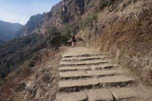 Traumhafte Trails...