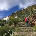 Wandern auf Treppenpfaden...