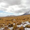Schneefall im April im Altiplano ist selbst im Juli möglich, trotz Trockenzeit
