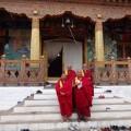 Mönche am Punakha-Dzong-Tempel