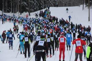 Ca. 6000 Läuferinnen und Läufer gehen an den Start.
