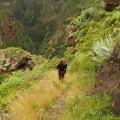 La Gomera: unterwegs im grünen Inselinneren