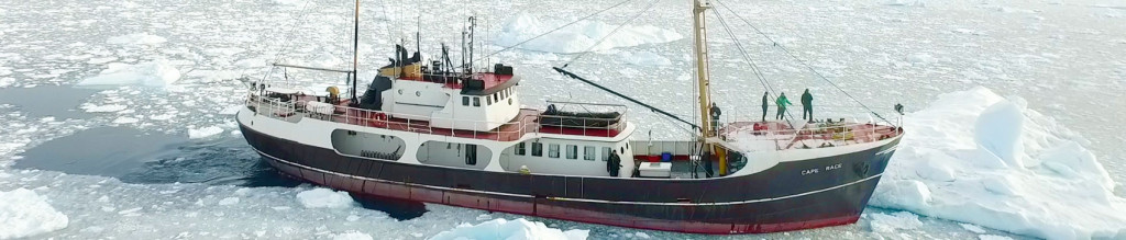 MS Cape Race - Expeditionsschiff