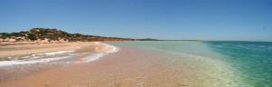 Australien_Shark Bay Big Lagoon