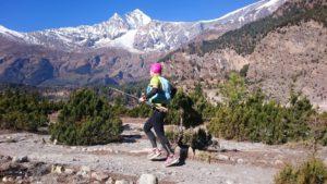 Auch am siebthöchsten Berg der Welt, dem Dhaulagiri (8167 m) führt der ACTR entlang