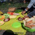 Reichhaltige Picknicks