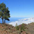 Blick auf die Ruta de los Volcanos und den herannahenden Nordostpassat