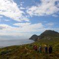 Zu Fuß statt mit dem Bus: auf alternativen Wegen zum Kap der Guten Hoffnung