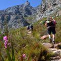 """Aufstieg auf den Tafelberg über die weniger begangene """"India Venster""""-Route"""