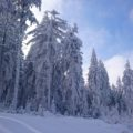 Winterwonderland in Oberhof