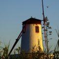 Windmühlen auf den Azoren – Zeugen der Geschichte