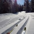 Ideale Langlauf-Bedingungen fanden unsere Teilnehmer in diesem Jahr in Schweden vor: hier beim Training in Grönklitt
