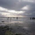 Gemeinsame Küstenwanderung am wunderschönen Nordhoek Beach