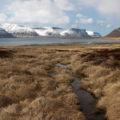 Im Dýrafjörður – stellen Sie sich das Gras einfach grün und die Berge schneefrei vor ...