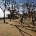 Die Strandpromenade – Laufstrecke im Winter, Flaniermeile im Sommer