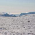 Am ersten Tag knapp 20 km immer leicht bergan - der Blick zurück zum Nordensköld-Gletscher: ein Traum