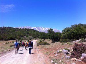 Wanderung zum Psiloritis im Ida-Gebirge