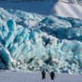 Wo sich die Gletscher durch lange Täler bis zur Küste ihren Weg bahnen ...