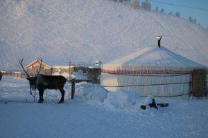 Über Jakutisches Nomadenleben erfahren