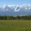 Kurai-Steppe, umgeben von Viertausendern