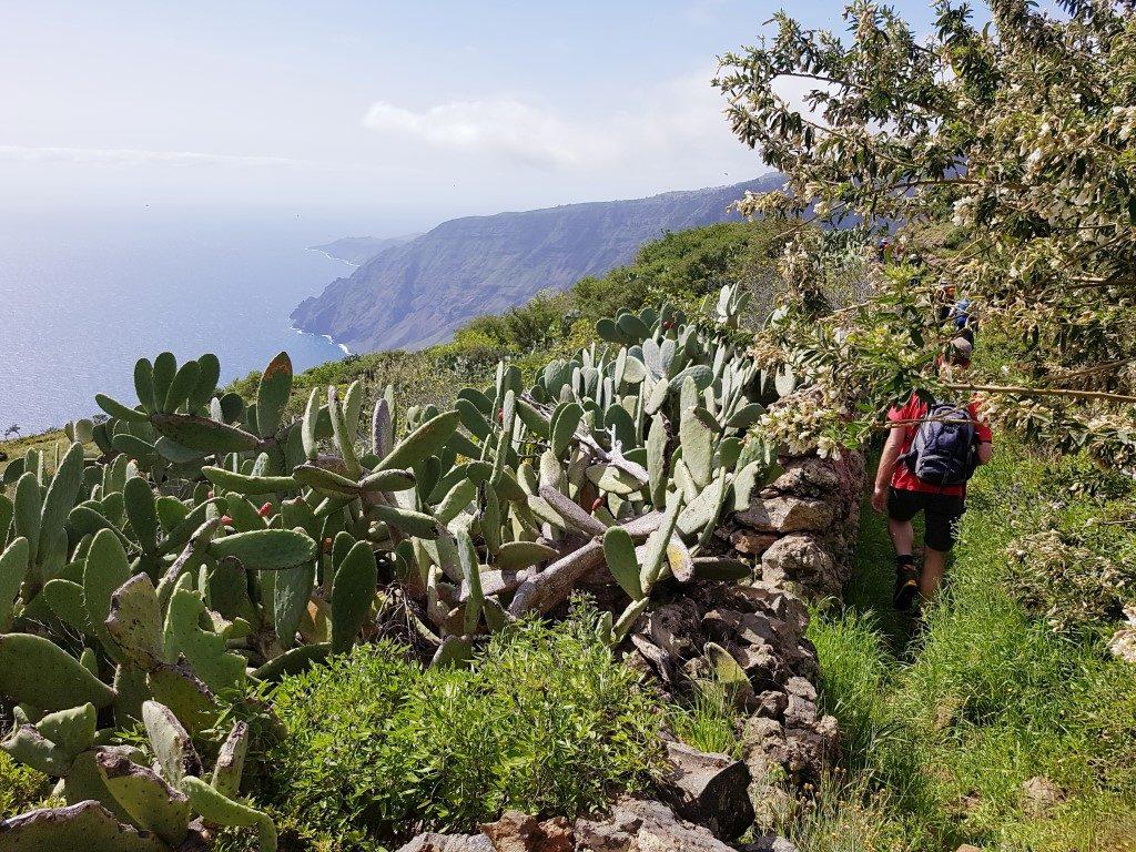 El Hierro – das letzte Kleinod der Kanaren