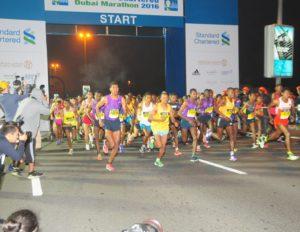 Den schnellsten Marathonläufern hautnah sein...