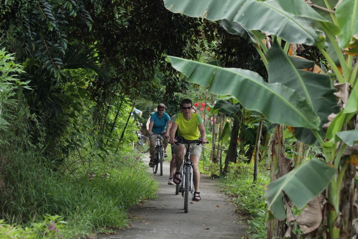 """Das Mekongdelta er""""fahren"""" Sie landestypisch per Fahrrad"""
