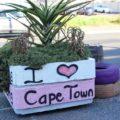 Kapstadt gilt als eine der schönsten Metropolen der Welt
