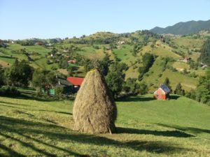 Eines der sehr typischen Landschaftsbilder in Rumänien/Siebenbürgen