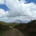 Wanderung mit lokalem (Massai-) Guide