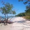 Traumstrand an der Nordküste Kubas