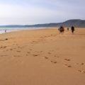 Und wenn dann noch so ein Strand auftaucht ...