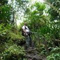 Exzellent ausgebildete Reiseleiter zeigen Ihnen die Naturparadiese