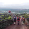 Abschlusswanderung durch die Weinfelder Picos