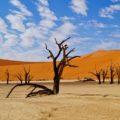 Die Dünen von Sossusvlei in Namibia bieten ein grandioses Farbspiel