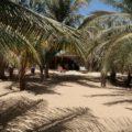 Das Hotel Mbaila in Mbour ist eine kleine Oase - ideal für ein gemütliches Ankommen (oder für Verlängerungen!)