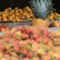 Frisches Obst (im Vordergrund Rambutan) gibt es in Costa Rica an jeder Ecke
