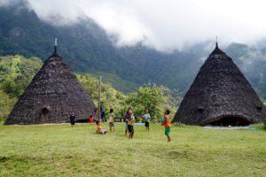 Charakteristische Kegelhütten der Bergvölker auf Flores