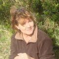 """""""12 Jahre ist es her, dass ich mich in die Azoren verliebt habe. Vor 7 Jahren machte ich meinen Traum war, packte meine Habseligkeiten samt Hund in einen alten Van und verließ die Schweiz Richtung Lissabon und dann Faial. Die Gastfreundschaft der 'Insulaner' und sowie das Erlernen des lokalen Dialekts machten das Einleben hier einfach. Am liebsten bin ich mit Wanderschuhen und Rucksack unterwegs, vorwiegend auf Faial, Pico und São Jorge. Die unberührte Natur, die üppige Pflanzenwelt, die Farben und wechselnden Stimmungen faszinieren mich täglich aufs neue. Gerne teile ich mein Wissen und meine Begeisterung über die Azoren mit anderen Wanderbegeisterten."""""""