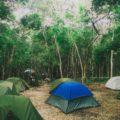 Auf dieser Reise übernachten Sie in festen Unterkunften als auch in Zelten, wie hier bei Calakmul