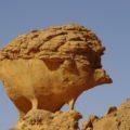Diese Felsformation sieht aus wie ein Igel